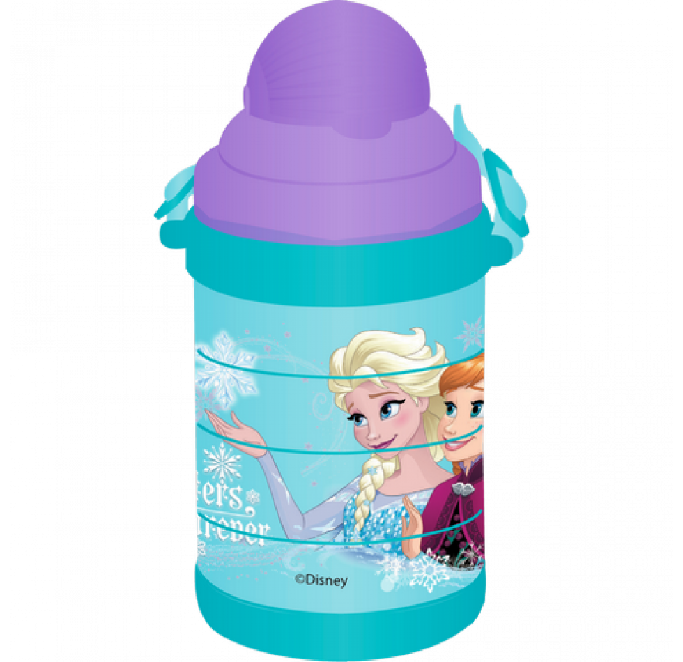 FROZEN PUZZLE BOTTLE 530 ML